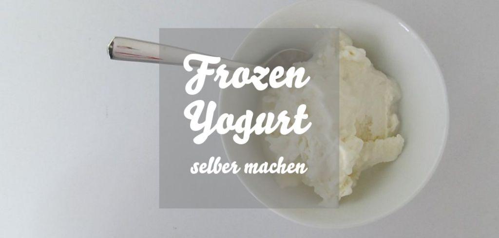 Frozen Yogurt selber machen