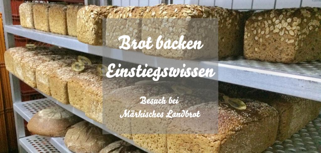 Brot backen Einstiegswissen Märkisches Landbrot