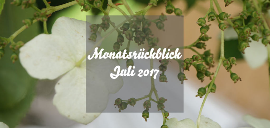 Monatsrückblick Juli 2017
