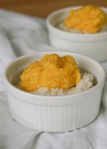 Milchreis Rezept vegan » Kokosmilchreis mit Mango selber machen