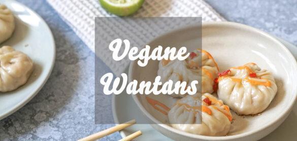 Vegane Wantans
